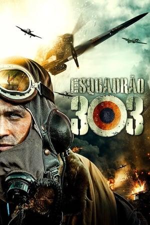 Imagem Esquadrão 303 (2018)