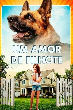 Poster Um Amor de Filhote HD Online.