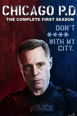 Baixar Serie Chicago P.D. - 1ª Temporada Completa (2014) Bluray 720p Dual Audio via Torrent