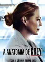 Grey's Anatomy 17ª Temporada Torrent (2021) Dual Áudio - Download 720p   1080p