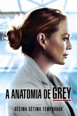 Grey's Anatomy 17ª Temporada Torrent (2021) Dual Áudio - Download 720p | 1080p