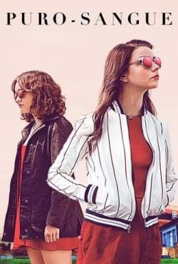 poster Puro Sangue Torrent (2018) Dual Áudio / Dublado BluRay 720p   1080p – Download