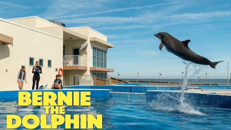Bernie el Delfín'