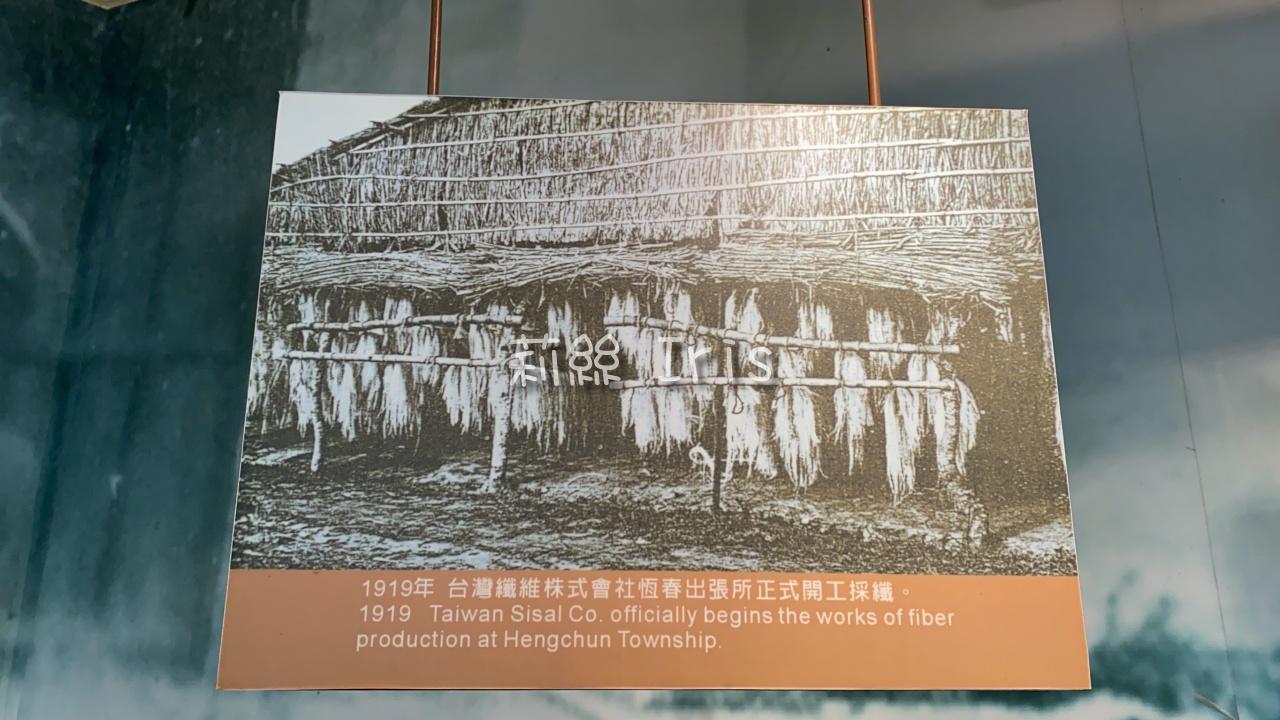1919年,台灣纖維株式會社恆春出張所正式開工採纖