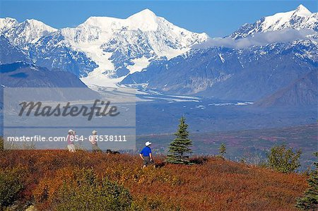Senior hikers on Little Coal Creek trail in Denali State Park     Senior hikers on Little Coal Creek trail in Denali State Park Interior  Alaska Autumn   Stock Photo