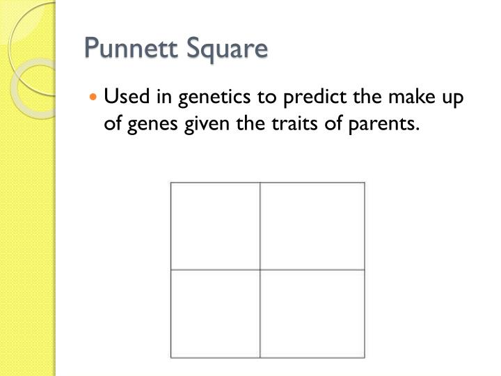 Parents Who Have Do 3 Square Traits Punnett How