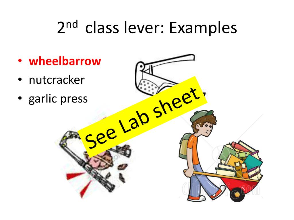 25 Best Looking For Simple Machines 2nd Class Lever