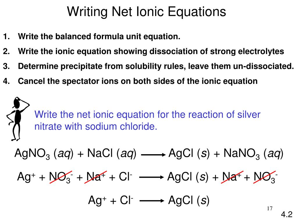 Net Ionic Equations Lab Answers