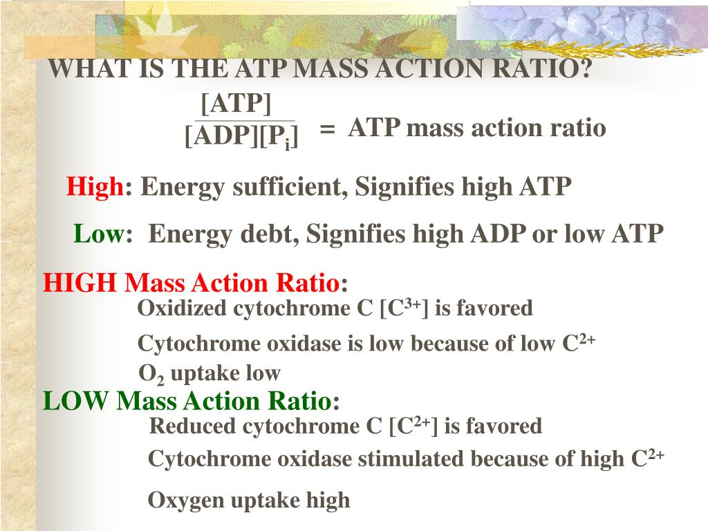 Atp To Adp Is Oxidation Or Reduction