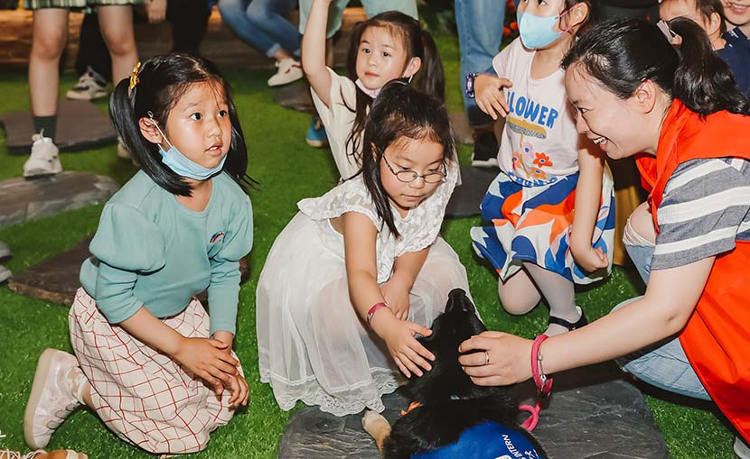 Children play with dogs during the animal-assisted therapy training course at the Bund Finance Center in Shanghai, May 17, 2020. Courtesy of the Bund Finance Center