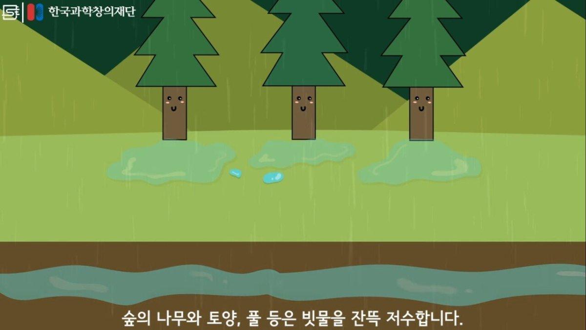 20200808_173929.jpg 초딩도 이해하는 태양광 때문에 잘린 나무가 하는일.jpg
