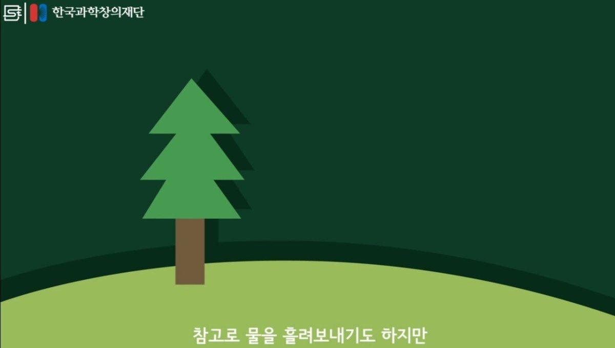 20200808_174043.jpg 초딩도 이해하는 태양광 때문에 잘린 나무가 하는일.jpg