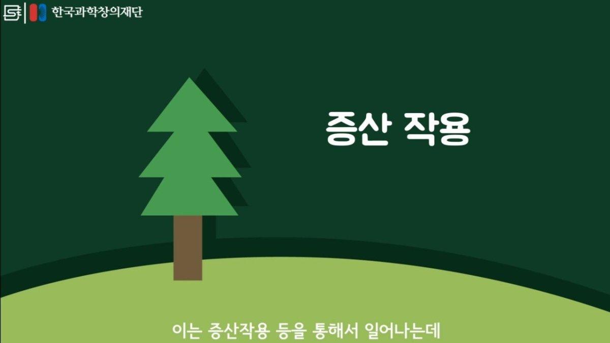 20200808_174103.jpg 초딩도 이해하는 태양광 때문에 잘린 나무가 하는일.jpg