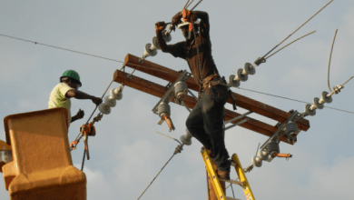 Électricité : la centrale électrique de Carrefour en phase de test - ENERGIE