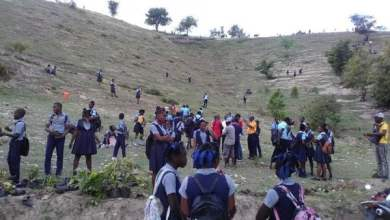 SUD: Des arbrisseaux plantés par des lycéens à l'occasion de la journée mondiale de l'eau - Environment