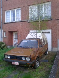 A uniquely-coloured VW - without the actual letters - has been overtaken by some fresh trees.