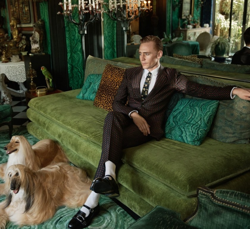 CAMPAIGN Tom Hiddleston for Gucci Cruise 2017 Men Tailoring by Glen Luchford. www.imageamplified.com, Image Amplified (3)