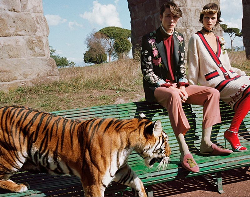 CAMPAIGN Gucci Spring 2017 by Glen Luchford. Alessandro Michele, www.imageamplified.com, Image Amplified (6)