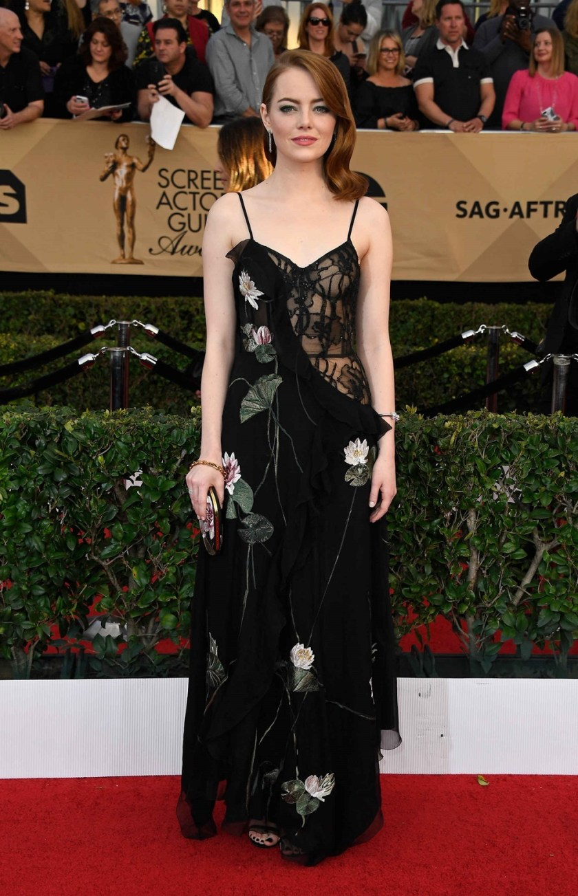 RED CARPET COVERAGE SAG Film Awards 2017. www.imageamplified.com, Image Amplified65