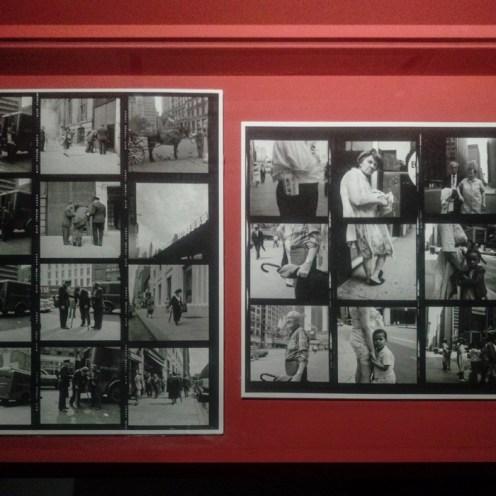 薇薇安展覽中的印樣陳列