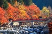 Korankei Autumn