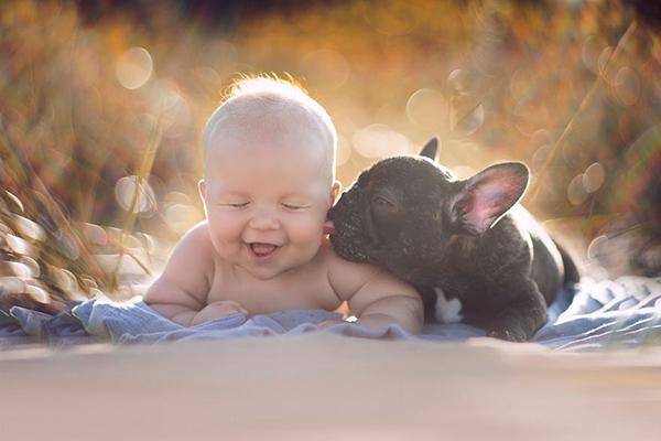 Fotos De Internet Mas Tiernas De Bebes Con Perros