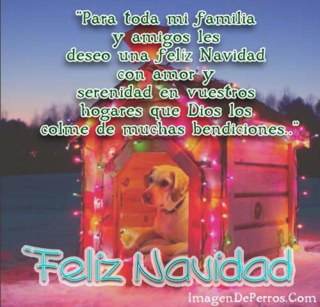 imagenes-de-perros-con-mensajes-para-desear-feliz-navidad