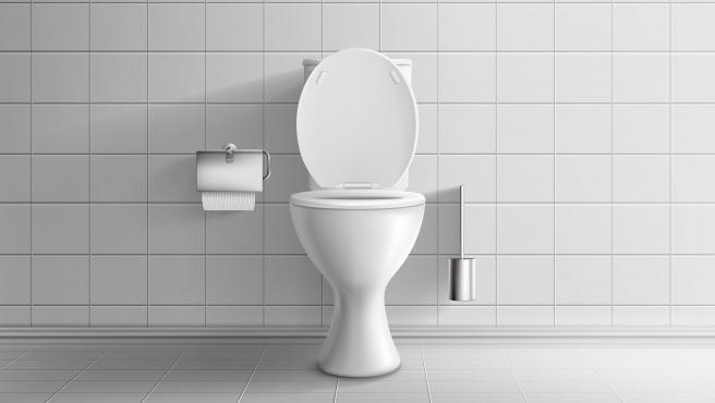 'El inodoro inteligente' es capaz de reconocer a cada usuario por su 'huella anal'.