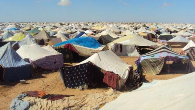 """Españoles viajan a Tinduf seguros de que no pasará nada: """"No es el momento  de abandonarlos, hay que seguir"""""""