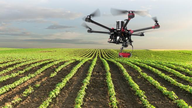 Los productores de alimentos tienen que seguir trabajando para asegurar el abastecimiento.