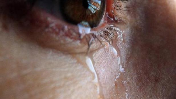180 navarras víctimas de violencia de género reciben ayuda psicológica