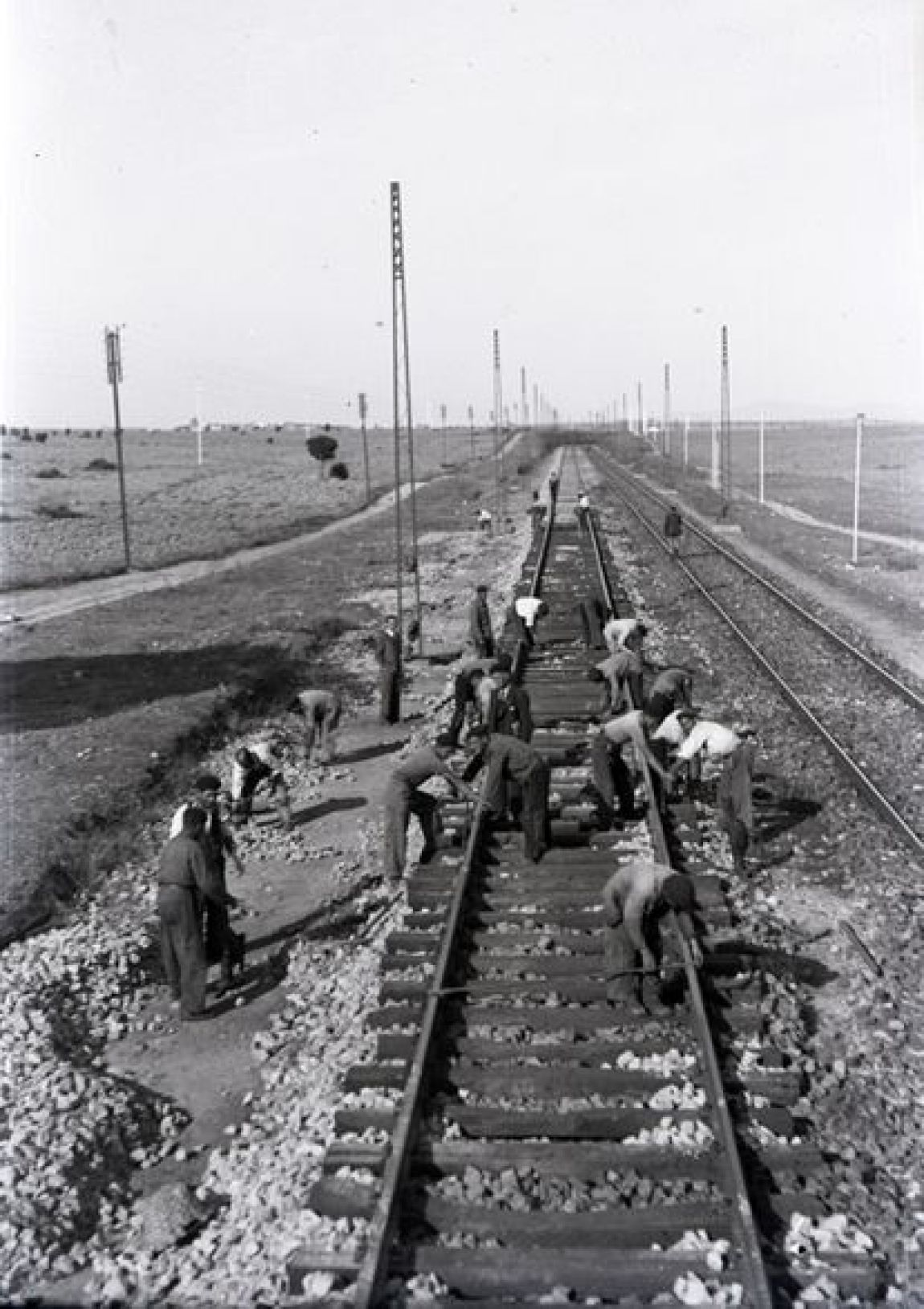 Holdings / Collection: Vicente Garrido Moreno.  A group of workers in the construction works of the Madrid-Irún line in 1944.