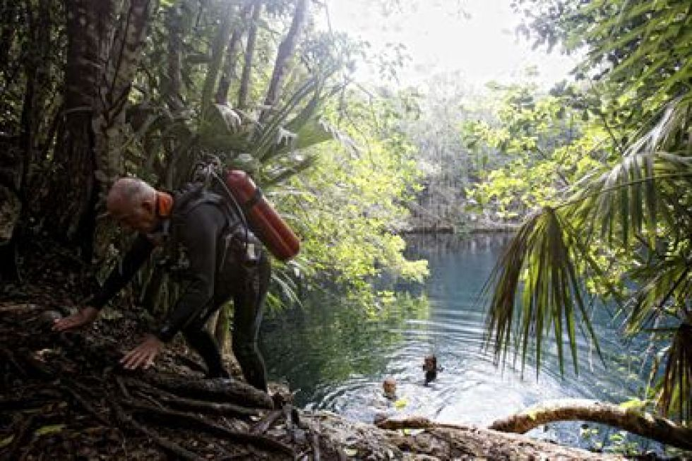 The Angelita cenote, a circular pool just over 60 meters deep and located 17 kilometers from Tulum (Mexico).