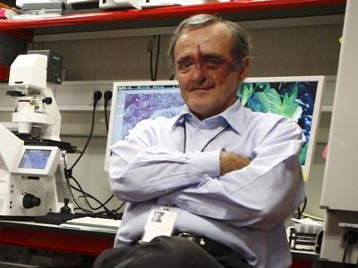 Mariano Barbacid, director del CNIO