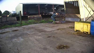 Una imagen de la granja en la que se ve a un trabajador golpeando a un cerdo.