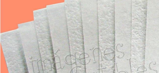 Promoción en paquete de 100 hojas de arroz
