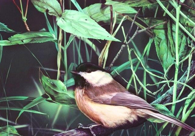 Imagen de pintura al oleo de un ave