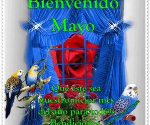 Imagenes de Aves Bienvenido Mayo Para Estado De WhatsApp