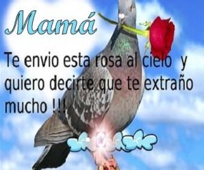Imagen De Una Paloma Para Enviar Un Mensaje A Una Madre En El Cielo