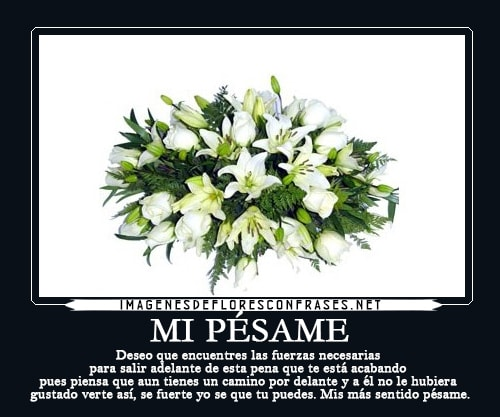 Imagenes De Pesame Condolencias