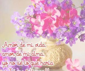 Imagenes de Flores Con Versos De Amor Para Whatsapp