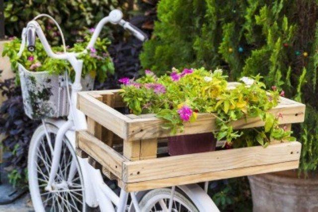 Bicicleta usada como macetero para decoracion del jardin