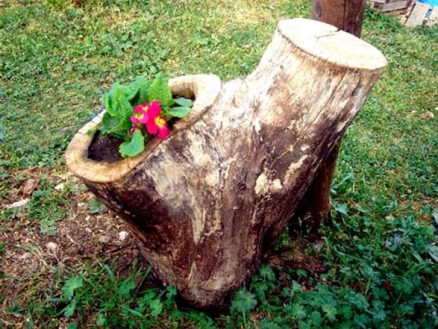 Fotos de jardines con troncos usados como macetas