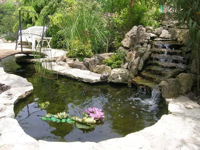 Ideas de estanques para el jardin trasero