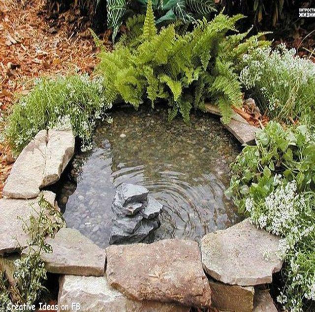 Imagen de estanque en el jardin