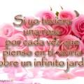 Los Mejores Versos De Amor Para Whatsapp En Imagenes De Rosas