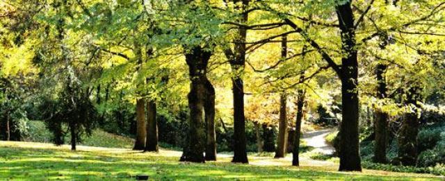 Imagenes del jardin parque del capricho madrid for Parques con jardines
