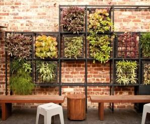 Imagenes Con Ideas Para Tu Propio Jardin Vertical