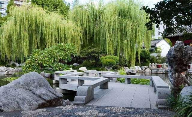 Jardin en Sidney Jardin chino de la amistad