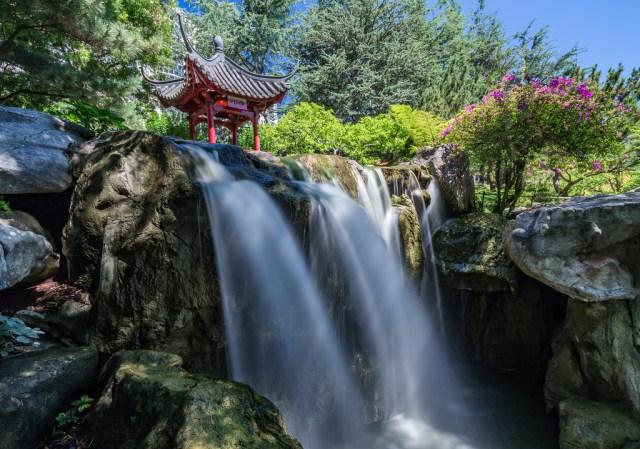 Jardines de australia Jardin chino de la amistad